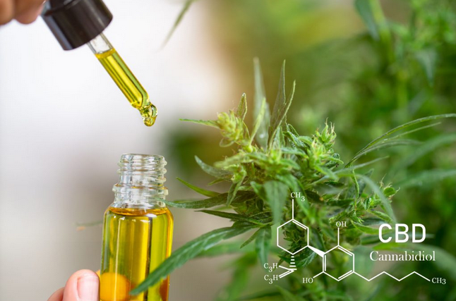 Things About The CBD Oil And Liquid